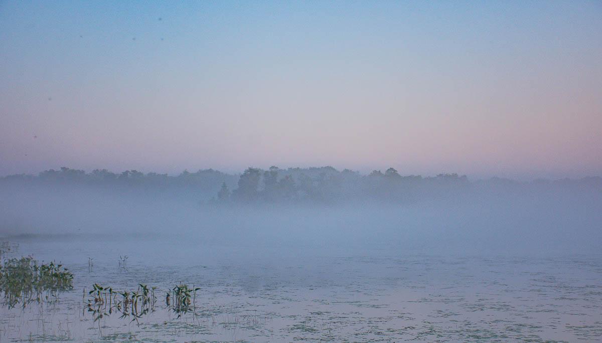 A foggy dawn on Bass Lake
